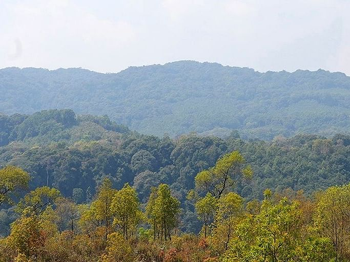 A national park in Dima Hasao, Assam: To be or not to be?