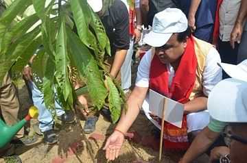 Assam minister Himanta Biswa Sarma planting a sapling on Diphu Medical College campus