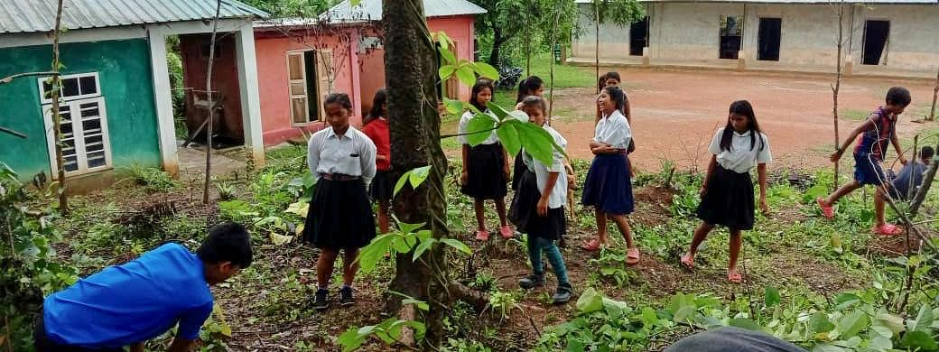 Students clearing a portion of land near their school for cultivation in Mizoram's Lawngtlai district