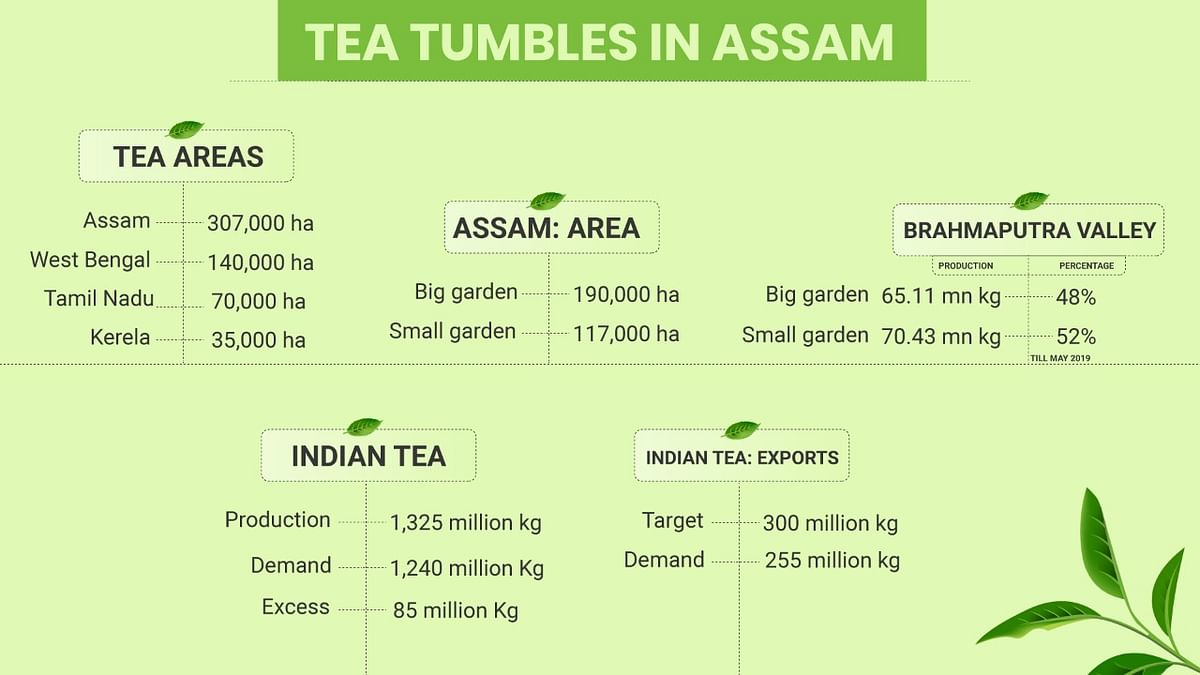 Assam's 175-year-old tea industry is in deep red