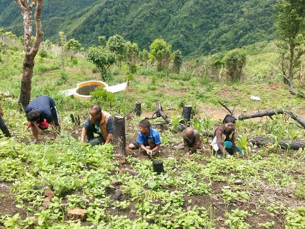 In all the selected schools and anganwadi centres in Mizoram's Lawngtlai district, children grow their own fruits and vegetables, reducing market dependence