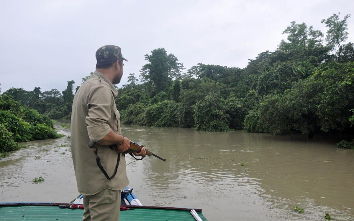 Forest guards at both Kaziranga National Park and Pobitora Wildlife Sanctuary are on high alert during the time of flood