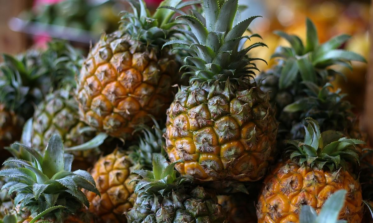 Tripura exports 'Kew' pineapples, meyer lemons to West Asia