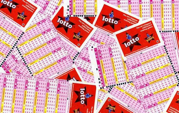 The Nagaland state lotteries directorate will declare the Dear Tender Morning results on its official website on Friday