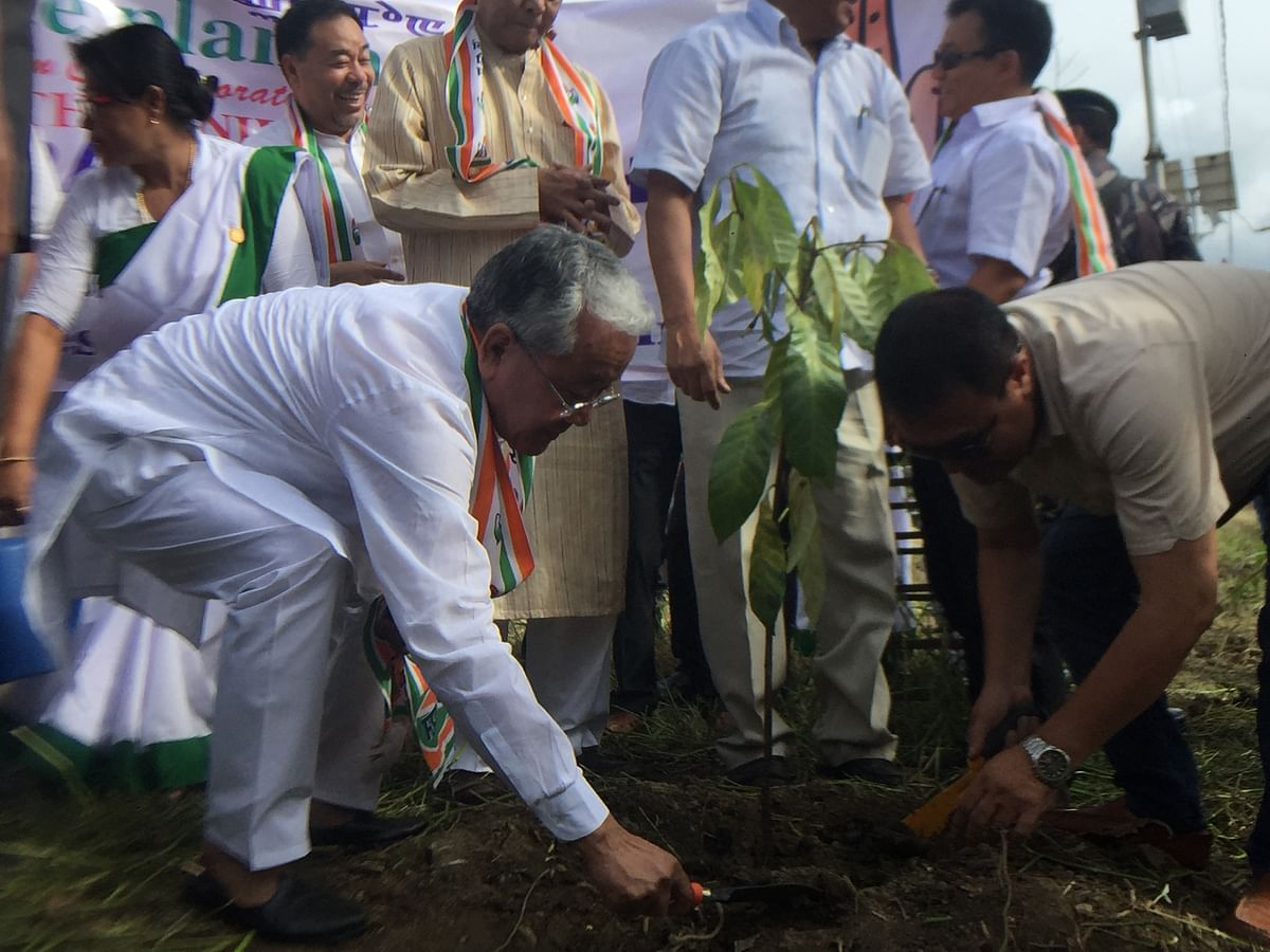 MPCC president Gaikhangam Gangmei planted saplings on the occasion of the 75th birth anniversary of former PM Rajiv Gandhi in Imphal