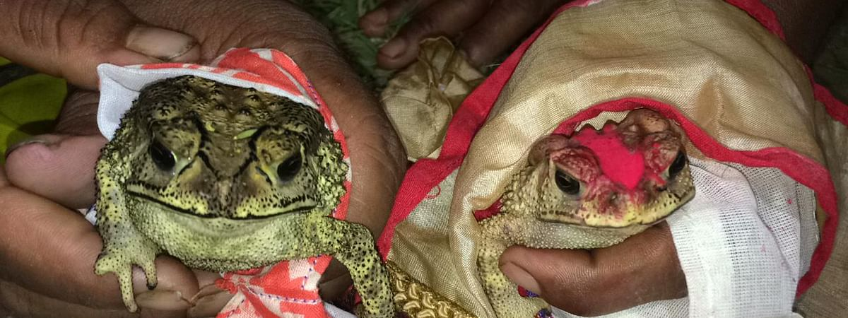 Both the 'bride' and the 'groom' were beautifully decked up in traditional Assamese attire