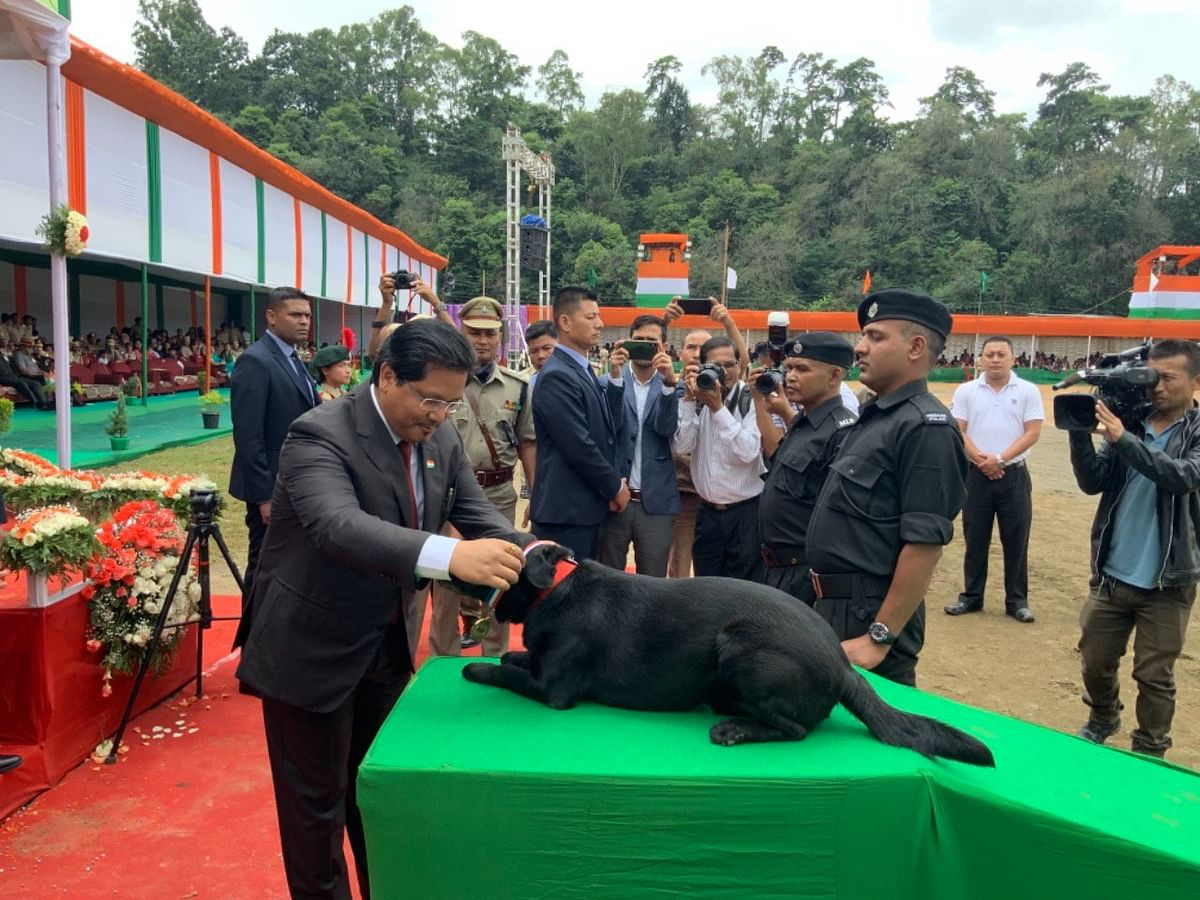 Meghalaya state canine unit gets 'medal of honour' on 73rd I-Day