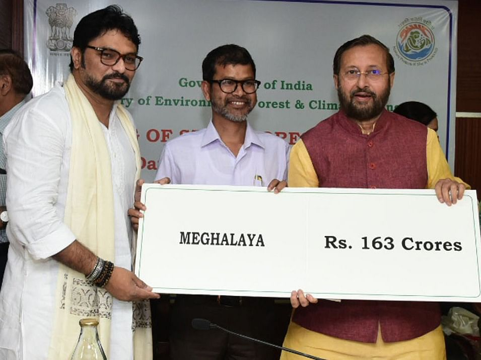 Centre grants Rs 163 cr to Meghalaya for afforestation under CAMPA