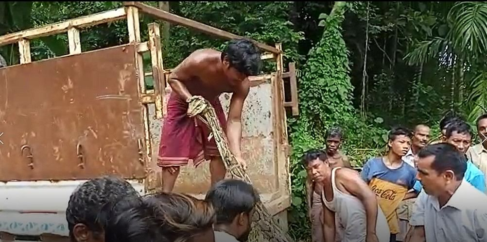 Villagers mercilessly loading the captured snake in to a rescue van in front of officials of the state forest department