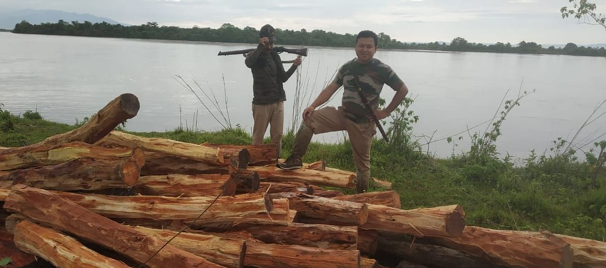 Forest officials with some of the recently seized logs that were to be smuggled through a river in Sadiya, Assam