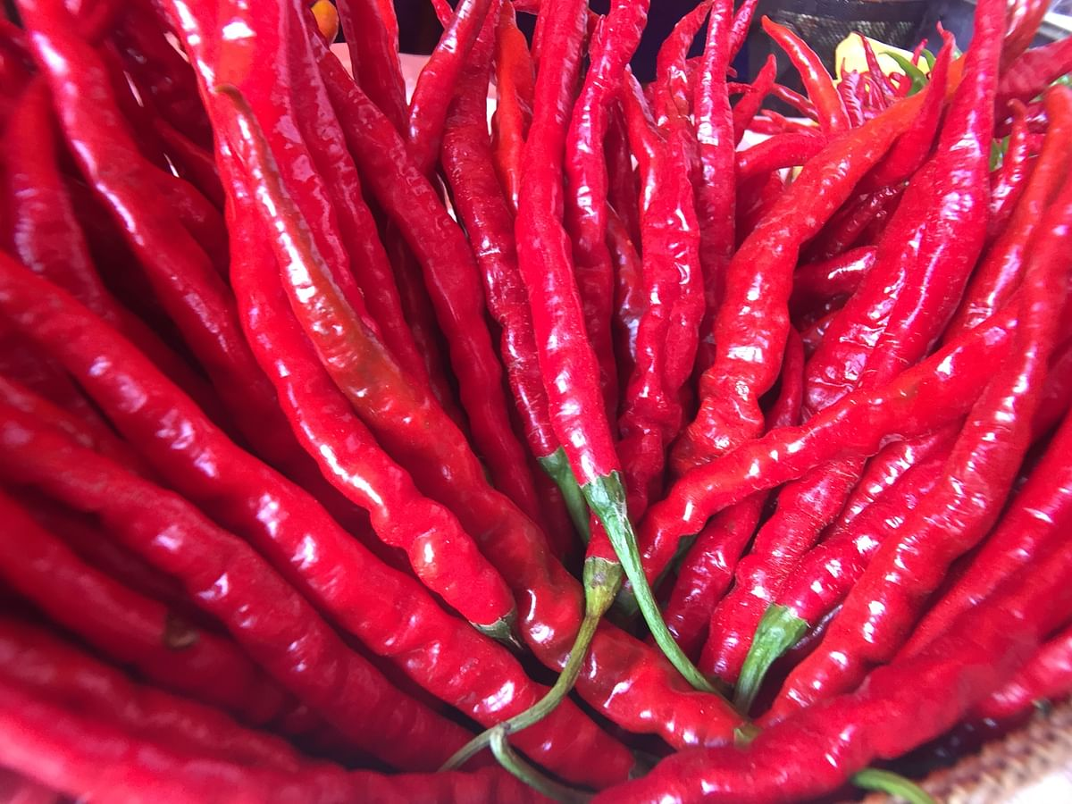 Hathei (chillis) being displayed at the Sirarakhong Hathei Phanit in Ukhrul district