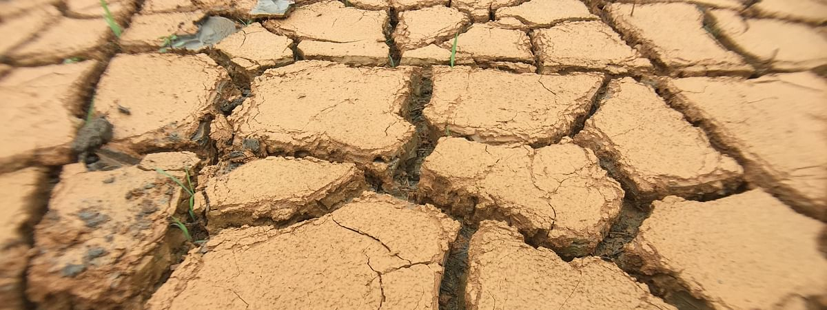 A drought-like situation has been witnessed in Manipur this year