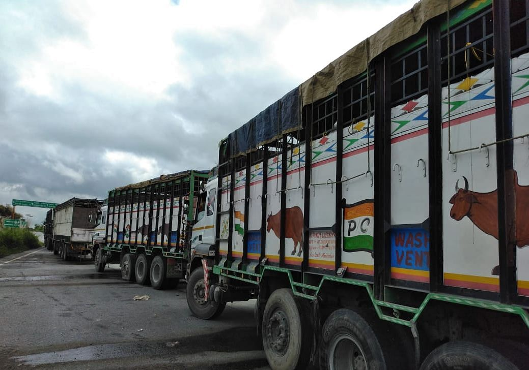 The five trucks that were seized by the police in Assam's Kokrajhar district on Thursday morning