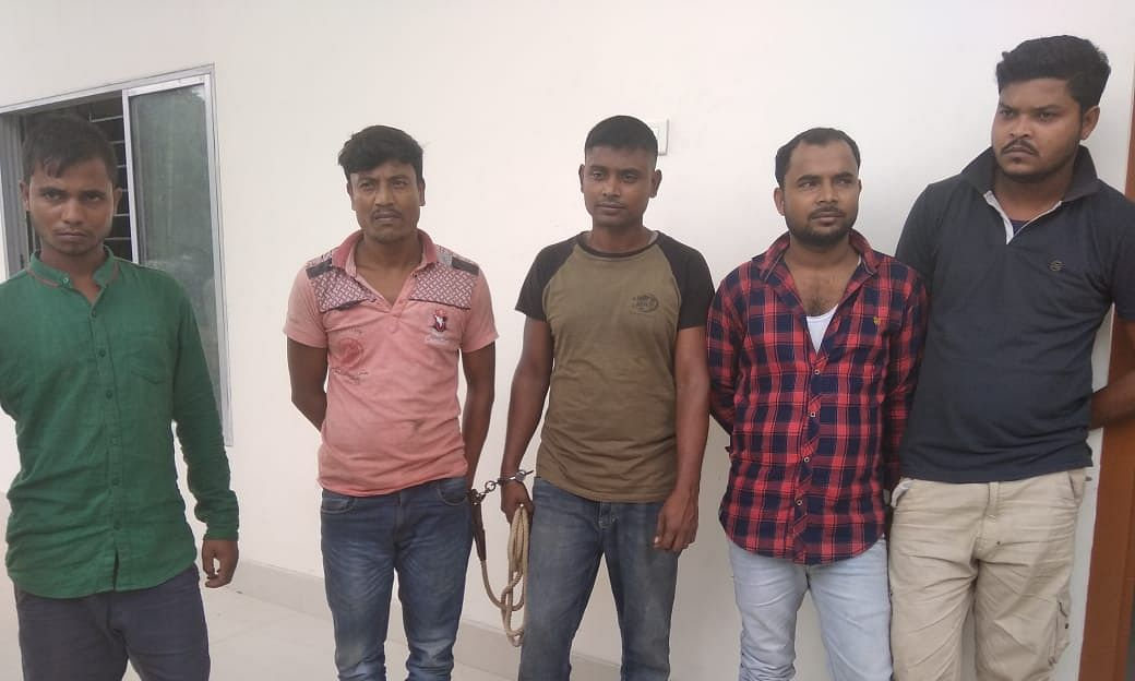 5 held for illegally carrying 80 cattle on 5 trucks in Assam