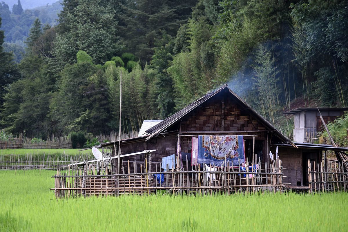 A typical house and forested areas around the paddy fields at Hong village in Ziro Valley of Arunachal Pradesh