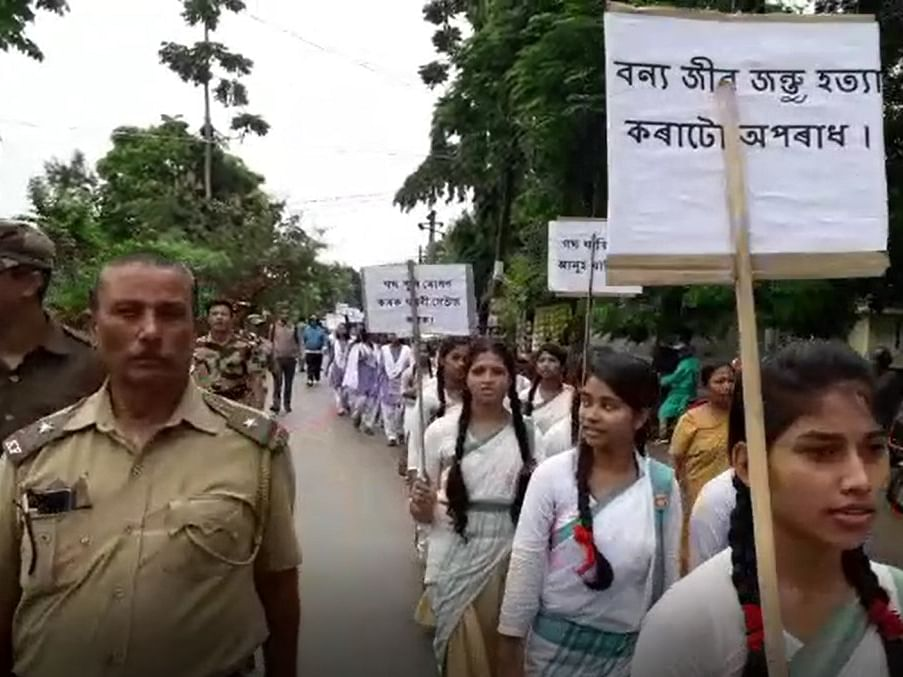 Assam students, forest officials urge people to protect wildlife
