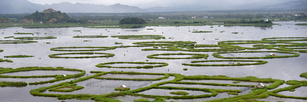 Manipur: Loktak Lake gasping for breath due to haphazard planning