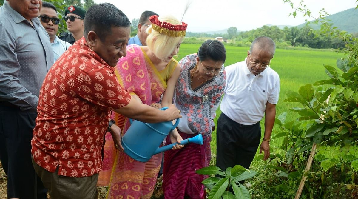 DJ Soda taking part in a tree plantation drive in Manipur's Imphal East district on Friday