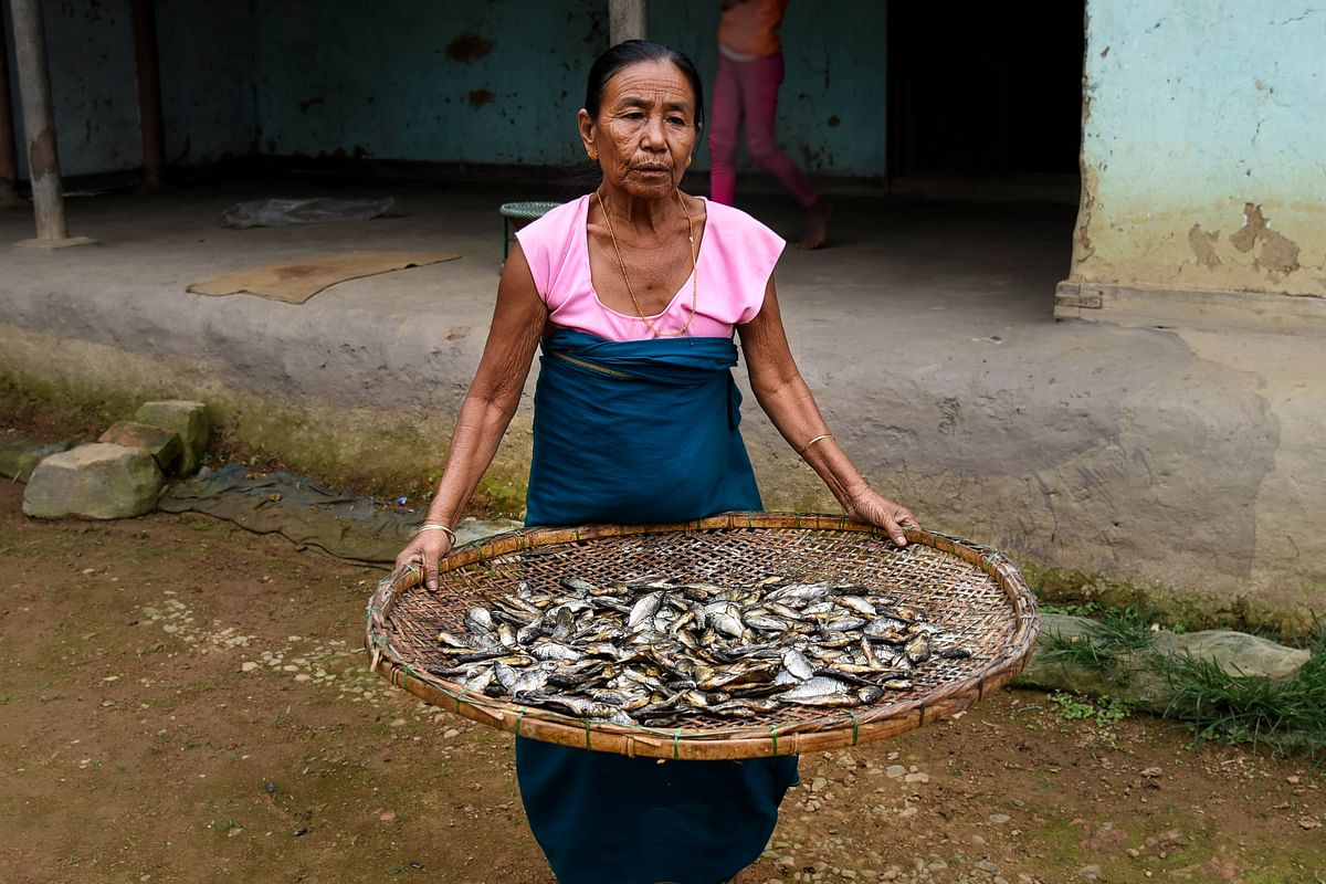 Catching fish has been the main source of livelihood of people of Thanga and its surrounding villages in Manipur