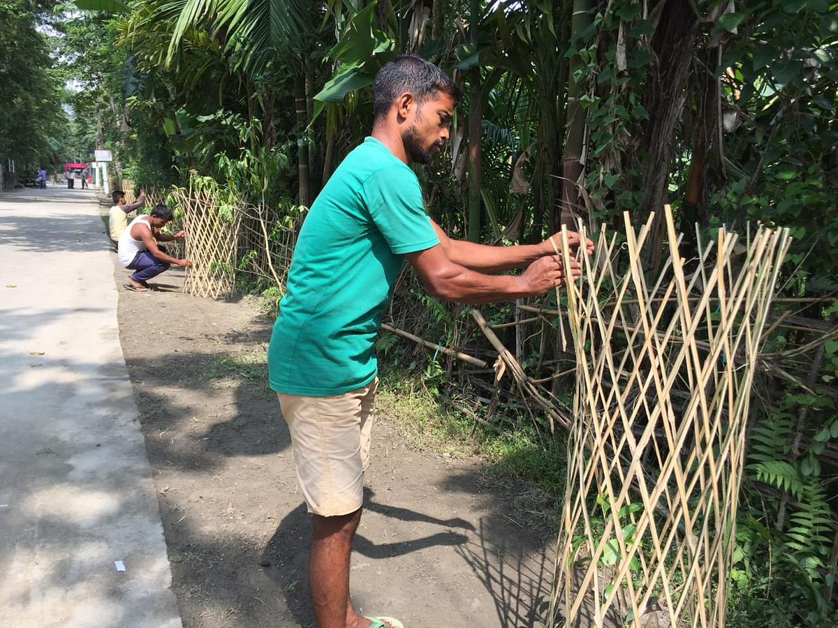 Villagers planting tree saplings on roadsides