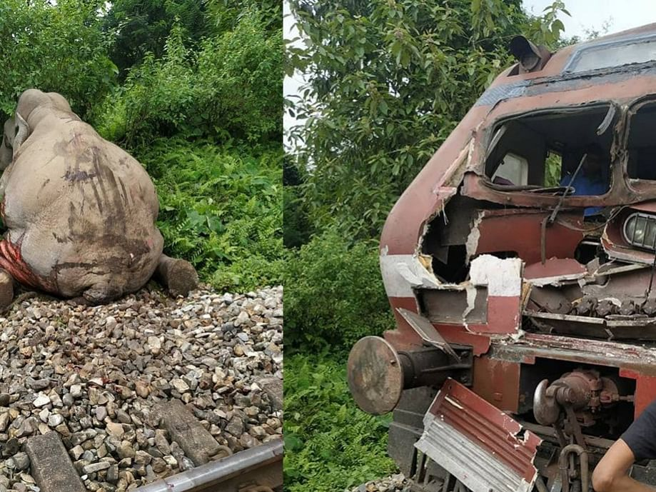 Assam forest department seizes Railway engine for killing elephants