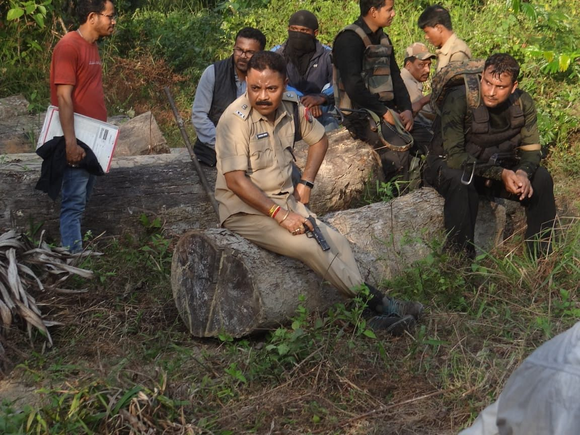 A large number of wooden logs have been detected near the area pointing the active role of timber mafia, said police