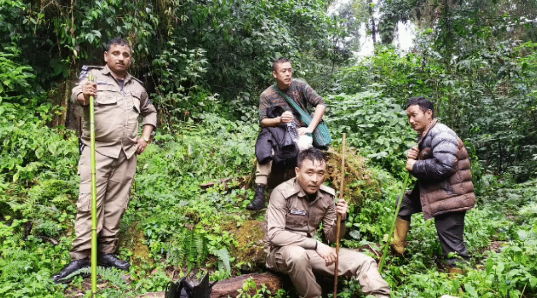 The cardamom plantation, located in Sumidang, Upper Dzongu in North Sikkim, can only be reached by trekking for over six hours through slippery jungle tracks