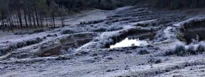Viral videos of the snowfall at Luvishe village, under the Aghunato sub-division of Zunheboto district, circulated on social media on Friday