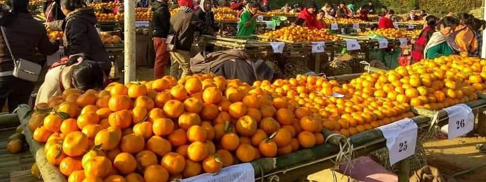 Stalls set up as part of the state-level Orange Festival in Manipur's Tamenglong district