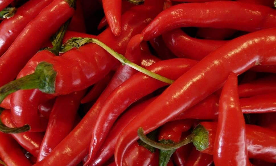 Spicy news for New Year: Chilli cuts risk of death by heart attack