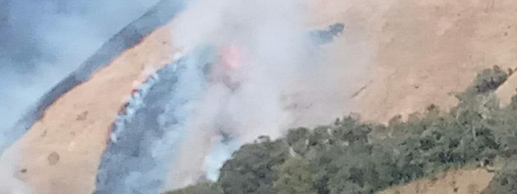 A forest fire reportedly started around 1 pm at Shirui Peak in Manipur's Ukhrul district on Friday