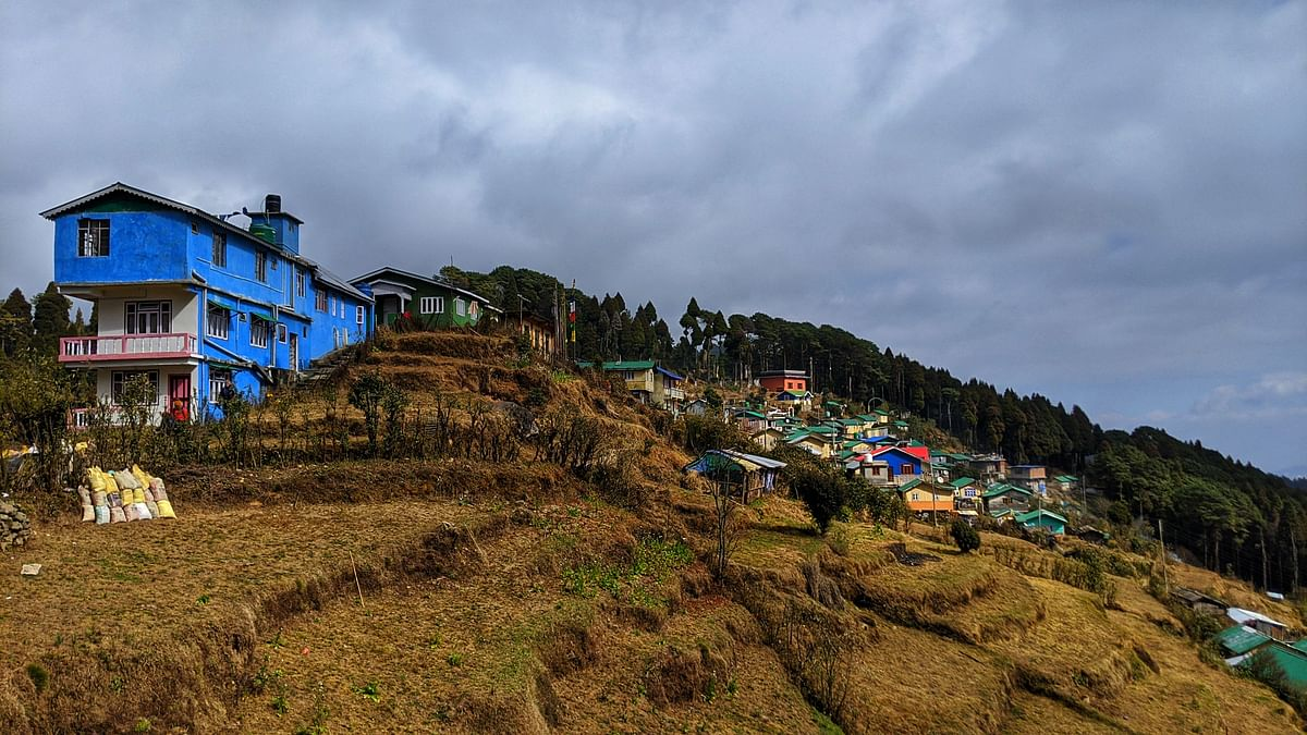 Dhotrey Village: Perched at an elevation of 7,887 ft on thehilltop above the quaint town -- Sonada, Darjeeling -- the starting point of the trek