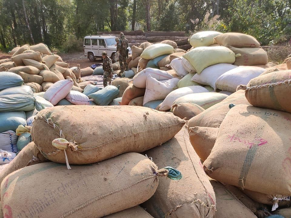 Manipur: Betel nuts, timber worth Rs 4.94 crore seized in Kamjong