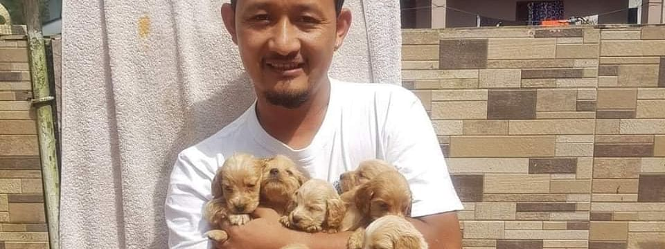 Jigme Dorjee Ladakhi is an animal lover and has rescued many animals during disasters in Sikkim
