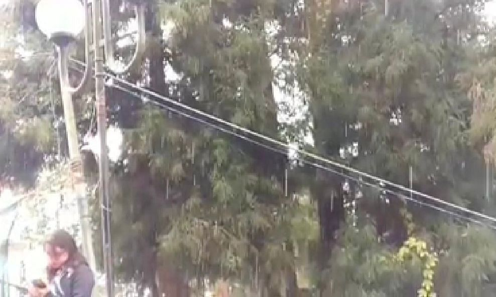 WATCH: Sikkim capital Gangtok witnesses snowfall after 15 years