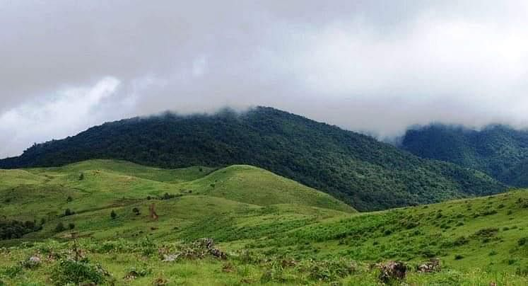 Phangrei Peak is located at a distance of 22 km from Ukhrul town along National Highway 150