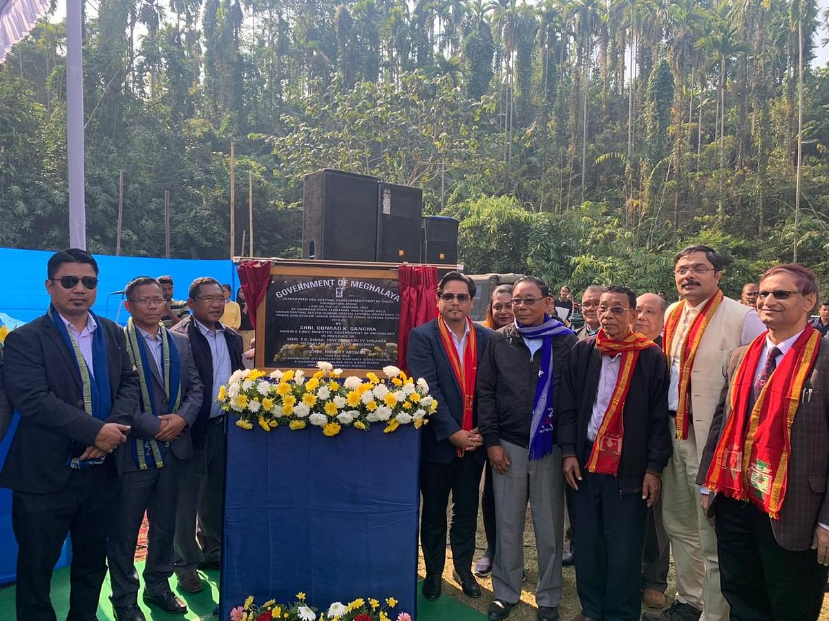 Meghalaya to get 1st beekeeping development centre worth Rs 10 cr