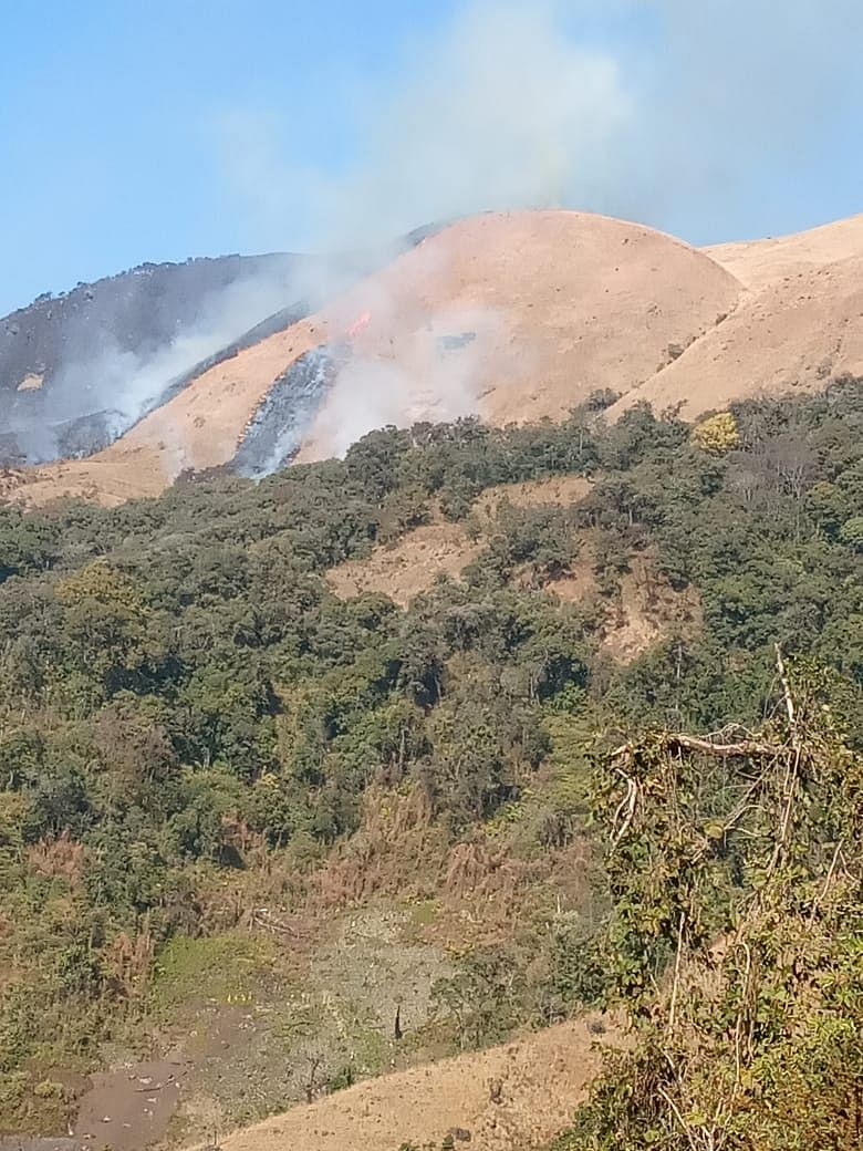 Forest fire at Shirui Peak on Friday afternoon
