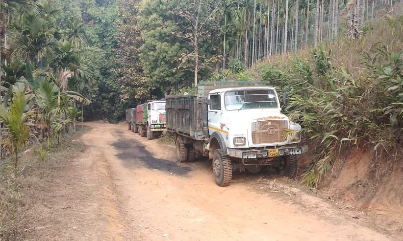 83 coal-laden trucks seized in middle of forest in Meghalaya