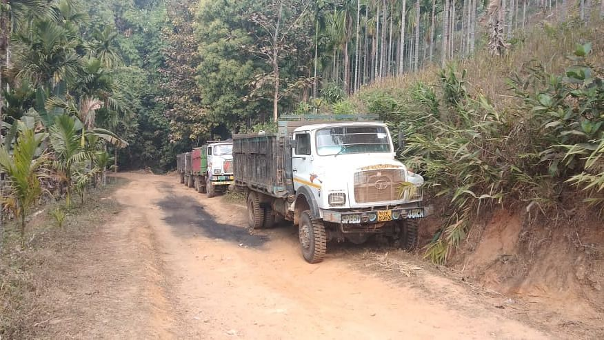 Some of the coal-laden trucks that were seized by police in Meghalaya's West Khasi Hills district recently