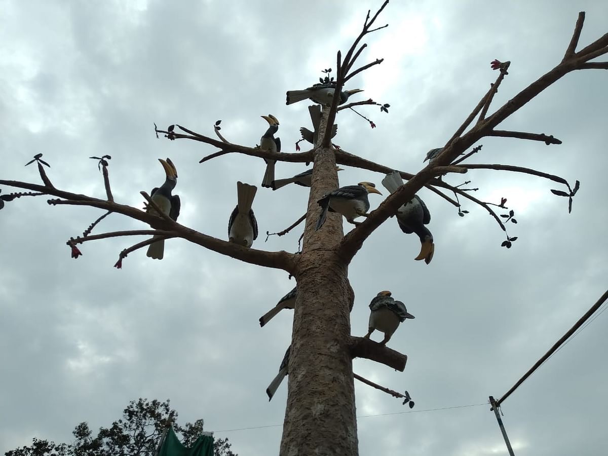 Tripura plans to woo tourists with Hornbill Fest in Baramura park