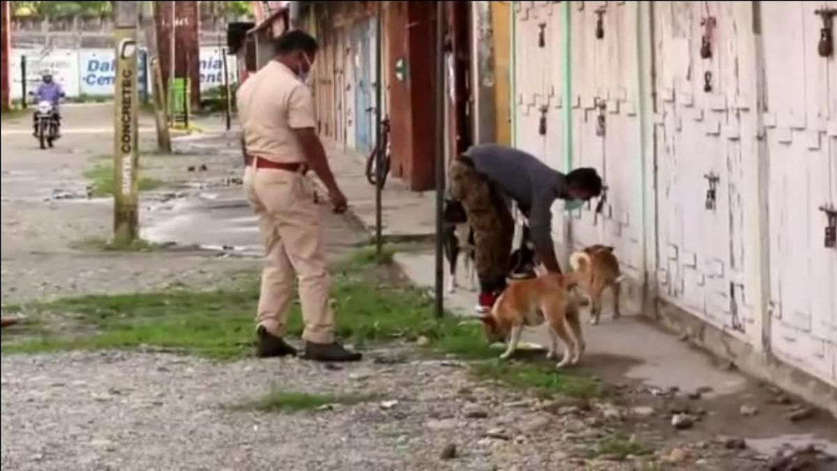 While patrolling the streets, cops distribute the food to the street dogs of the locality