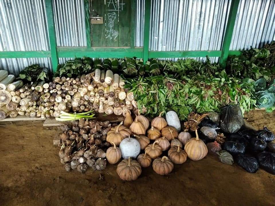An assortment of vegetables being sent by the hill people in Imphal amid lockdown