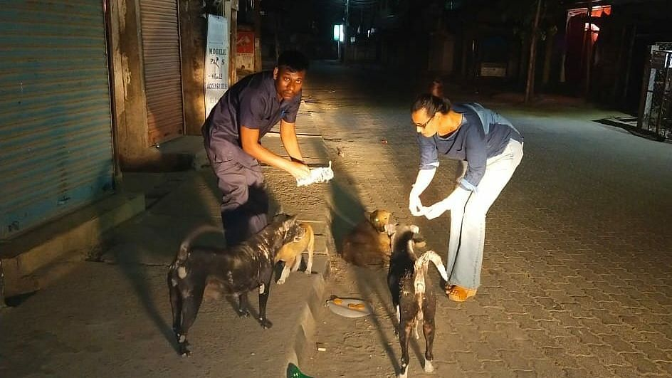 Along with officials of the special unit of Assam Police, Ashma has been working round the clock to provide food to the stray animals