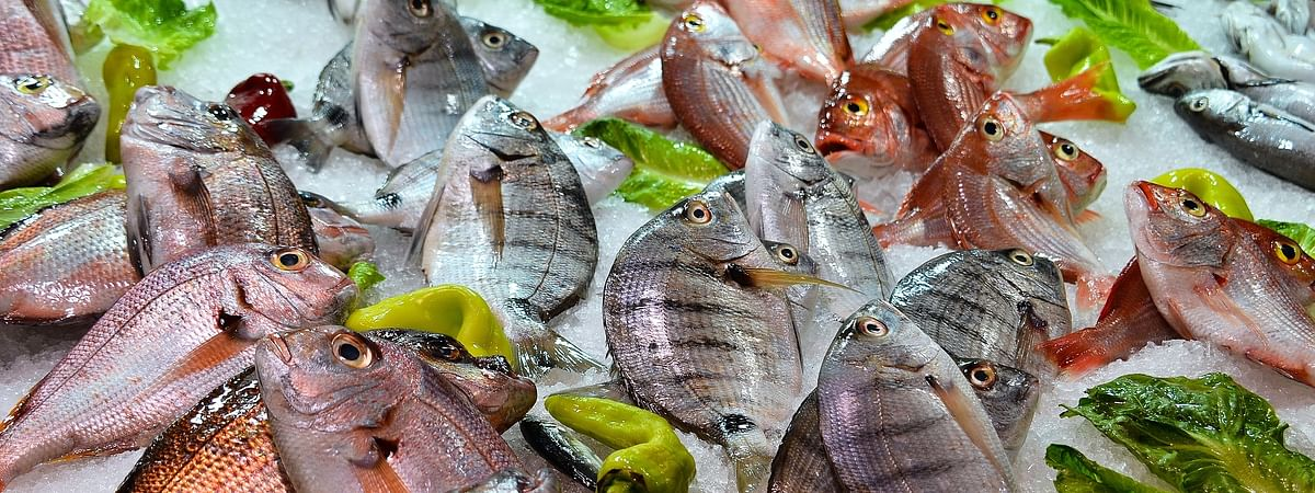 Only fresh and hygienic fish will be allowed for sale