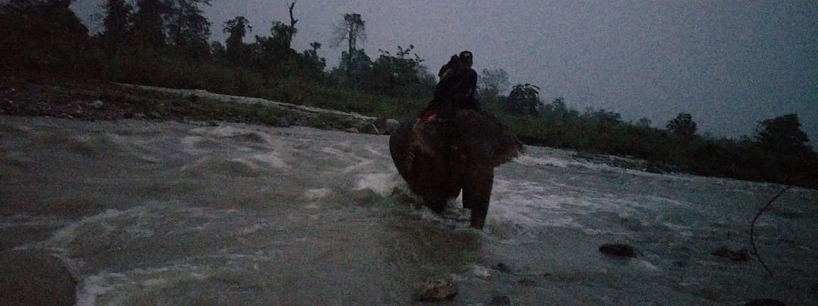 Both the girls were rescued by an elephant