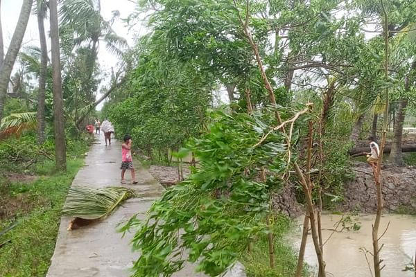 Trees uprooted at Bagdanga village in Mousuni Island.