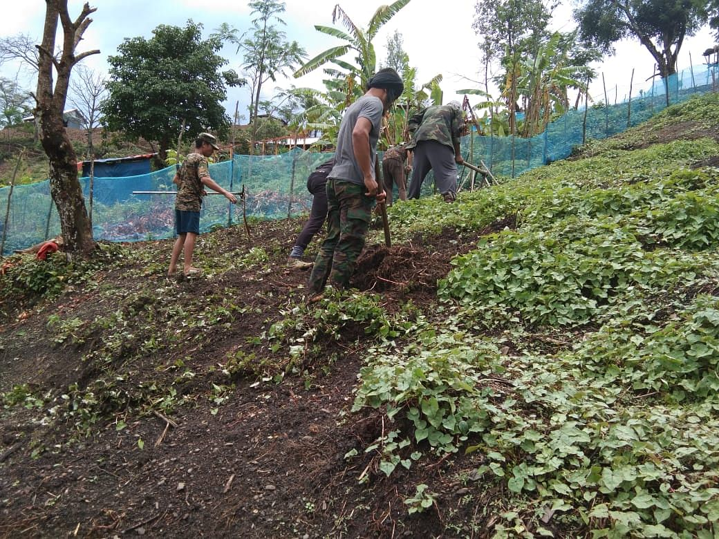 NSCN-IM members working at a vegetable garden inside the designated camp in Manipur's Chandel district