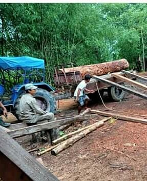 Three tractors laden with illegal timber logs were also seized by the police