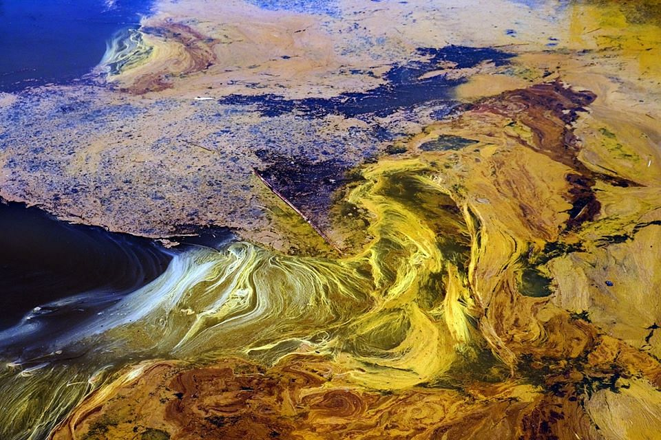 The kaleidoscopic view of oil in the water is as poisonous as its attractive colors